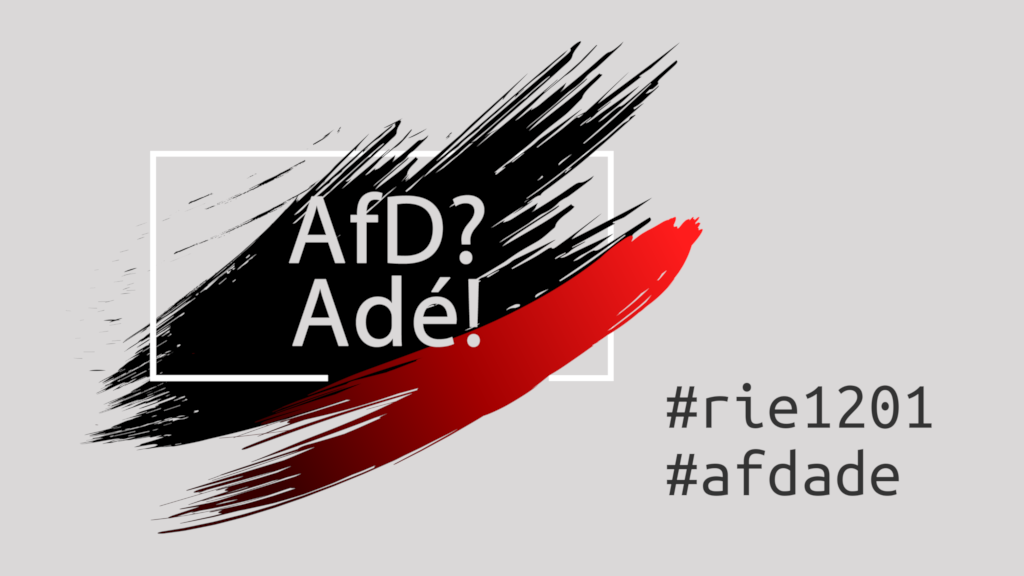 AfD? Adé! am 12. Januar 2015 in Riesa